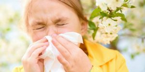 A Little Girl Blows Her Nose Into A Tissue After Sneezing From Allergies.