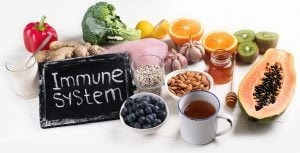 immune system food and nutrients