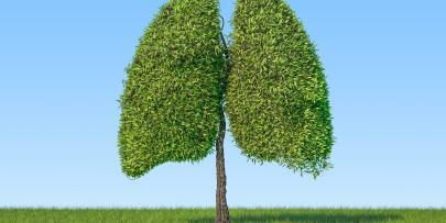 6 ways to reduce the risk of lung cancer
