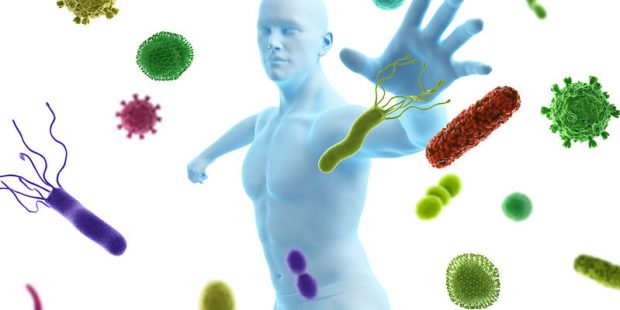 7 Ways to Support Your Immune System